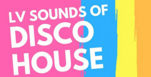 LV Sounds of Disco House (Soundcloud)