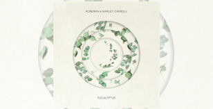 Koresma x Marley Carroll – Eucalyptus – FREE DL