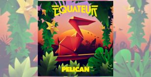 Equateur – Pelican (Caspian Pool remix)