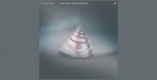 Transistorcake – Future Plan I (Betonkust Remix)